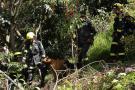 Colombia cuenta con grupo de búsqueda y rescate clasificado internacionalmente