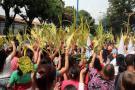 Harán controles para evitar comercio de palma en Domingo de Ramos en Bucaramanga