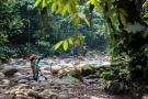 Han documentado 920 especies en Santander