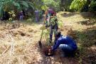 Lista la programación para el Día  del Medio Ambiente en El Puerto