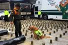Descubren 220 kilos de droga en un envío de fibra de vidrio en Bucaramanga