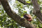 'Santander Bio', la expedición que se toma los nuevos territorios de paz