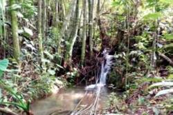 El proyecto busca aislar las fuentes hídricas, con cerramientos de 100 a 500 metros de postes ecológicos,  alambre de púas calibre 2.50, y cuatro hilos de alambre para que haya una buena protección.