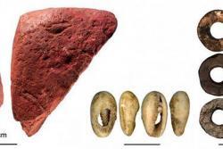 Se recogieron huesos, ocre labrado y cuentas hechas con material marino y huevo de avestruz.