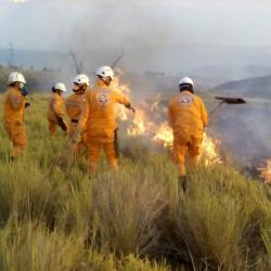 Incendio consumió 120 hectáreas de vegetación y cultivos en Los Santos