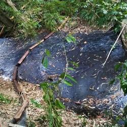 Aún no se controla derrame de crudo en Santander, denuncian grave daño ambiental