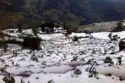 Imágenes de la fuerte granizada que afectó cultivos en Santander