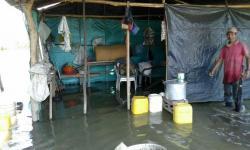 Imágenes del desbordamiento del río Magdalena en cultivos de una vereda en Puerto Wilches