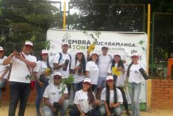 Así fue la 'siembratón' de 3 mil nuevos árboles en Bucaramanga