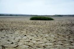 Qué es el fenómeno El Niño y cómo prepararse para este cambio
