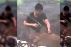 Policía rescata novillo a punto de ahogarse en Santander