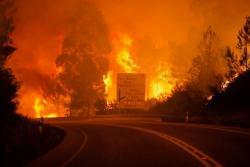 Aumentan a 62 las personas fallecidas en incendio de Portugal