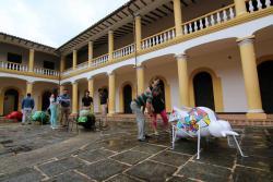 Estos son los nuevos 'hogares' de las hormigas del Paseo del Comercio de Bucaramanga