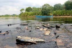 Mancha de petróleo llegó al Río Sogamoso de Santander