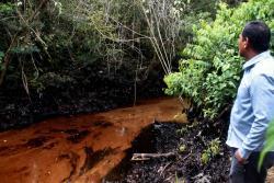 'Drástica sanción recibiría Ecopetrol si ocultó datos sobre derrame de crudo en Santander'