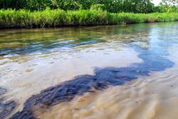 Afectados 300 pescadores en Santander por mancha de crudo que viaja por el río Magdalena