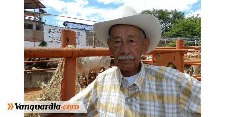 Ganadero de Santa Helena del Opón apoya la feria del Socorro. - Vanguardia Liberal