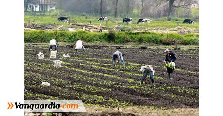 Agricultura colombiana será apoyada por la Únión Europea