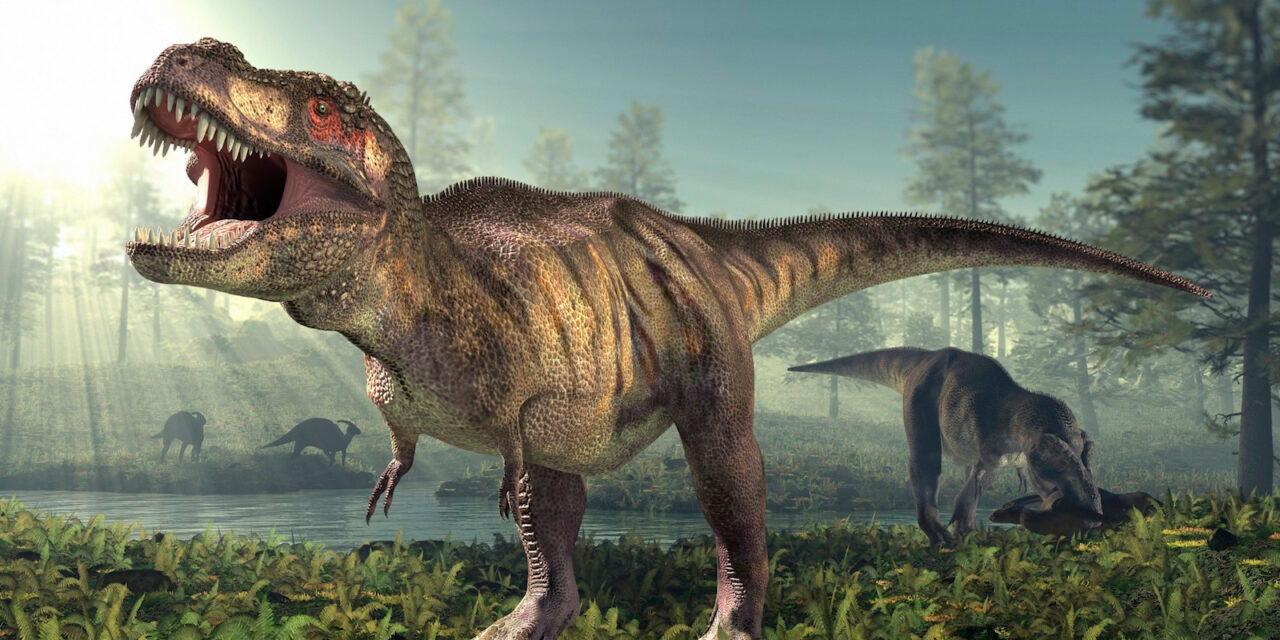 Una Historia De Dinosaurios Vanguardia Com Alquileres de vacaciones en villa de leyva. vanguardia