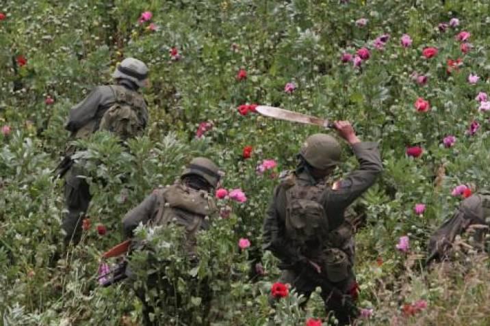 Plan Colombia fracasó en la lucha contra las drogas: Comisión Política de  Drogas de EE.UU. | Vanguardia.com