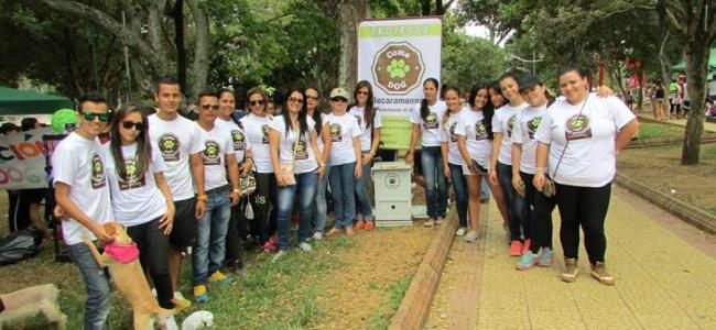 Perros y gatos callejeros de Bucaramanga tienen su propio comedor