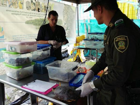 Investigarán a Ecopetrol por derrame de crudo en el Magdalena Medio