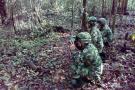 Detienen en Colombia a siete disidentes de las Farc liderados por 'Guacho'