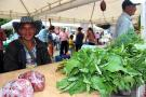 Impulsan el crecimiento de la economía rural en el municipio