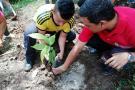 Excombatientes hallan nuevo rumbo entre cultivos de cacao en Santander