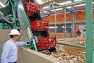 Agroindustria del caucho tiene el futuro asegurado