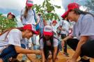 Van 749 árboles sembrados en Bucaramanga, del Plan Forestal