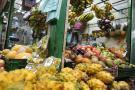 Huevo, arroz y frutas no  tendrían IVA en la reforma