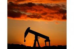 Ante la incertidumbre de que la Opep aplicará recortes a su producción, el precio del petróleo se depreció lo cual llevó a la caída internacional de las bolsas, comportamiento que significó un alza del precio del dólar.
