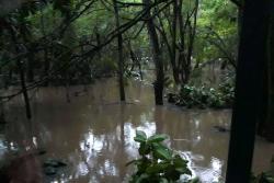 Parque Gallineral amaneció inundado tras fuertes lluvias en San Gil
