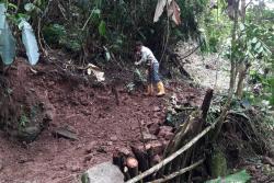 Así fue la titánica restauración del Parque Natural Los Yariguíes en Santander