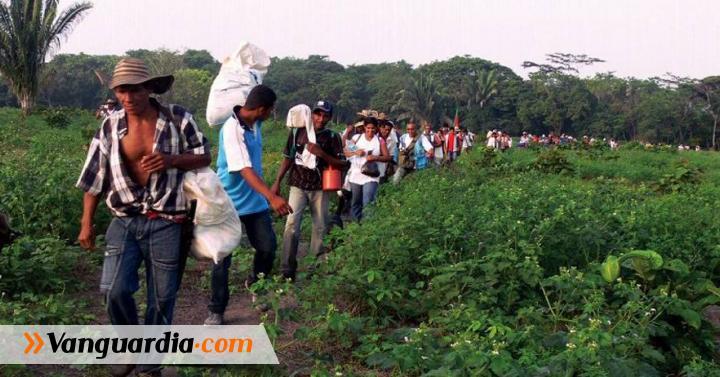 Informe de Acnur muestra incremento de desplazamientos por cuenta de la guerra